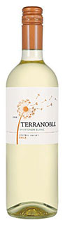 Terranoble Sauvignon Blanc 2010 (wine review and rating)
